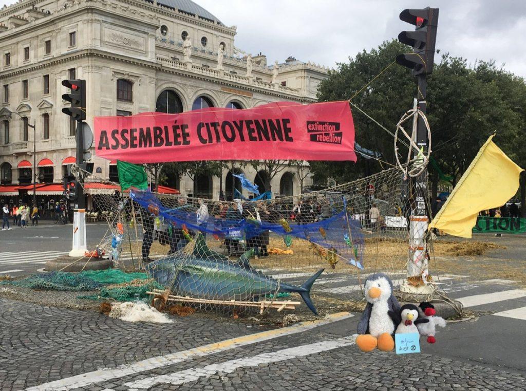 Extinction Rebellion Pingouin au Châtelet